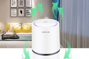 Best Air Purifier for Smoke (Reviews) in 2020 + Buying Guide
