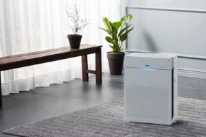 7 Best Air Purifiers for Allergies (Buying Guide)