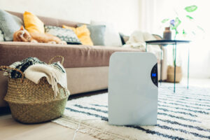 The 8 Best Dehumidifiers (Reviews) For Home Use