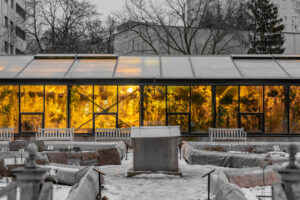 The 6 Best Conservatory Heaters (Reviews) and How to Pick Yours