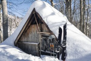 The Best Shed Heater On The Market to Keep You Warm